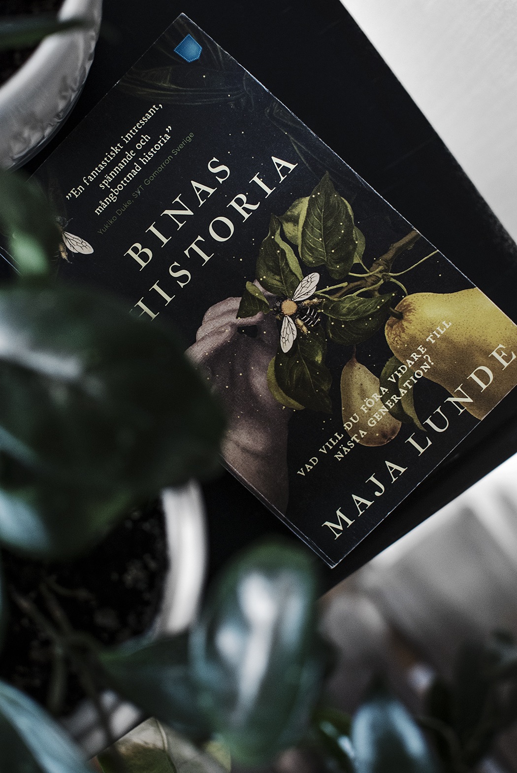 Bokdagbok IX – Binas historia
