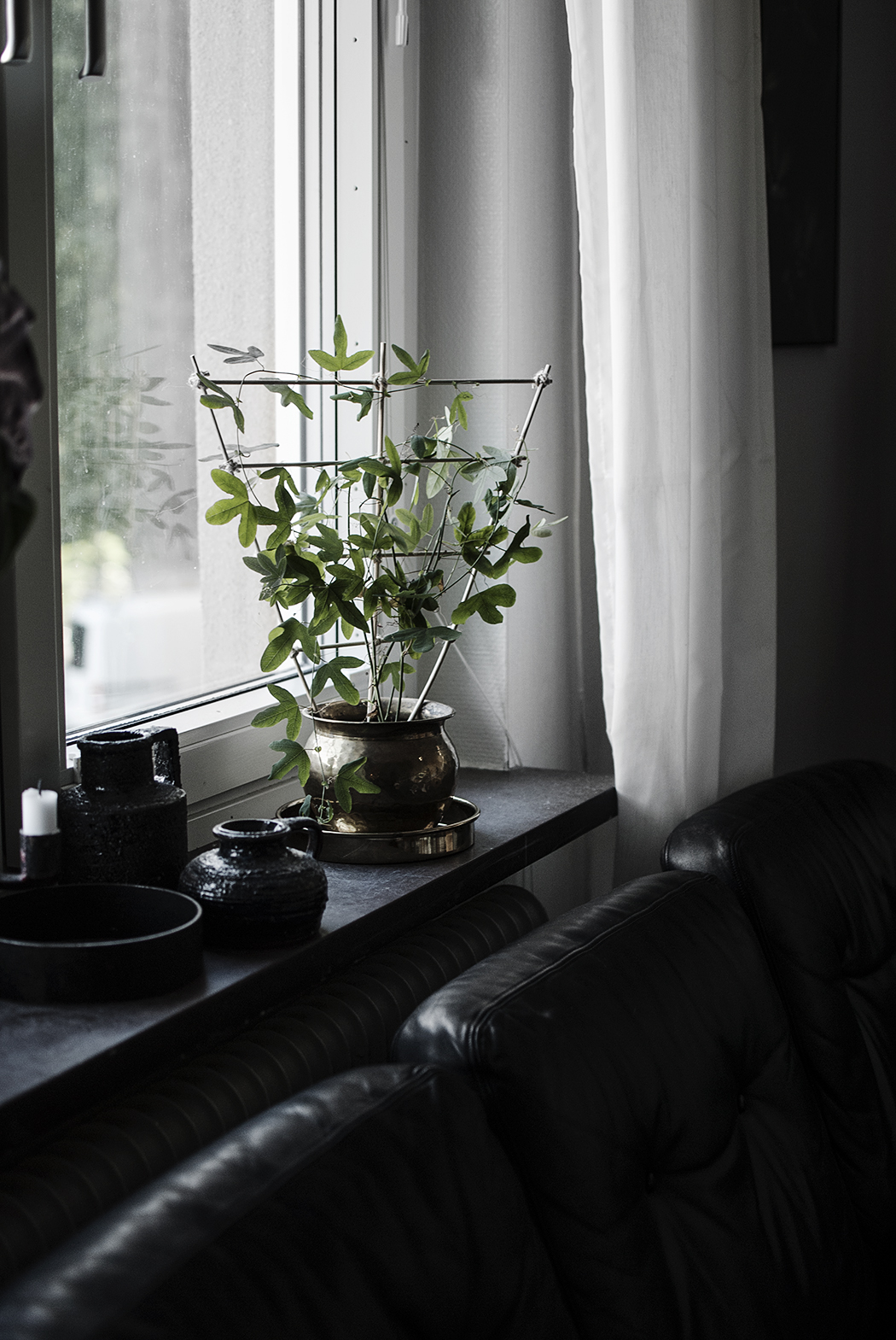 DIY: Spaljé till krukväxter
